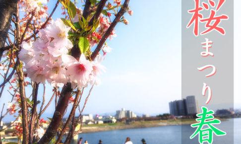 狭山池北堤の桜ライトアップ「桜まつり・春 2019」が2019年3月23日から4月5日まで開催