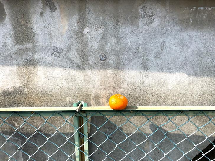 大阪狭山をもっとキレイで、もっとカッコイイ街にするために「グリーンバード大阪狭山チーム」