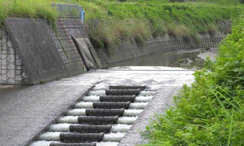【ゴム堰(せき)】8月19日の豪雨後の様子が気になって「西除川」へ行ってきた-(2)