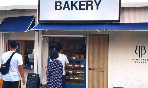 イオン金剛店のすぐ側にあるパン屋さん「BLUE TREE BAKERY(ブルーツリーベーカリー)」さんに行ってきました (4)