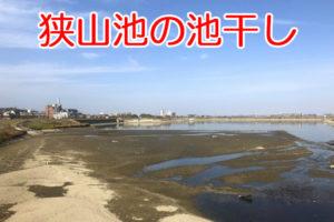 【龍神淵も登場】「狭山池の池干し」が2019年11月から実施-(3) (1)