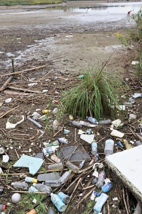 「狭山池クリーンアクション」×「コスモ-アースコンシャス-アクト-クリーン・キャンペーン-in-狭山池」が開催されました-(6)