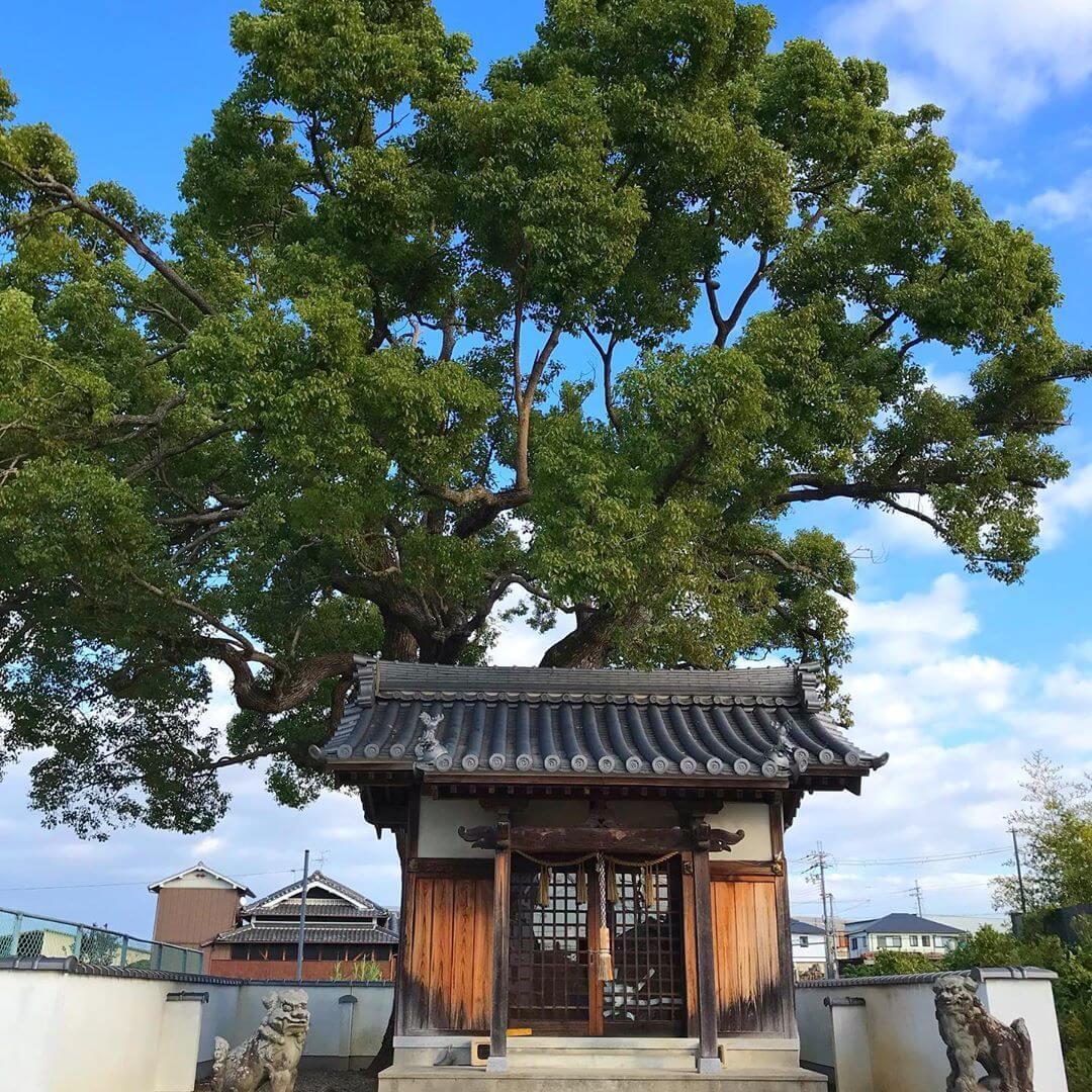 山本地区をお散歩中に「稲荷神社」に寄ってきました (5)
