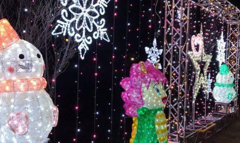 【2019年】現在、狭山池北堤では桜並木にイルミネーションの灯りが灯り、幻想的な光の華が咲いています! (2)