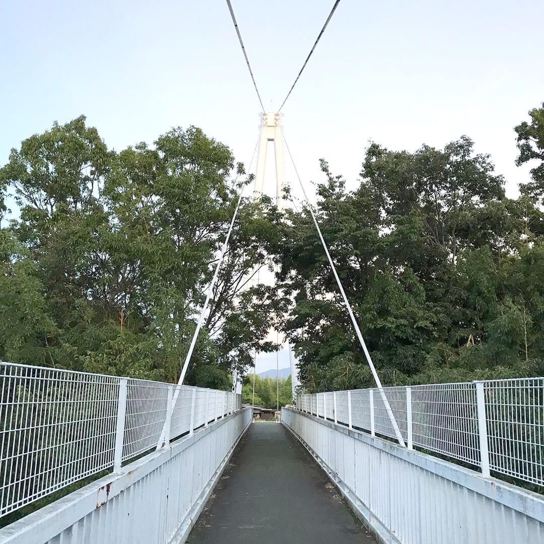 西新町公園から初芝立命館高等学校(旧桃山学院大学)に架かる橋「聖アンデレ橋」に行ってきました (3)
