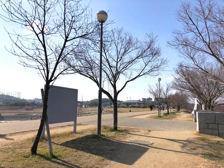 2020-02-02狭山池の桜