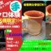 柿陶芸教室で「ロクロ陶芸体験」が2020年3月22日に開催