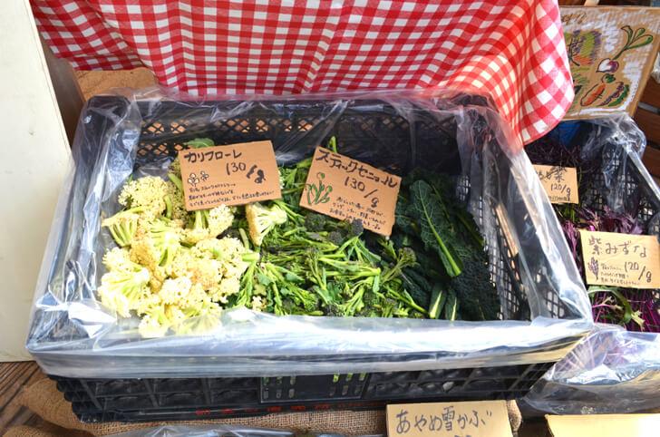 【小さなお子様も安心】旬の無農薬野菜を直売!「笑ノ百姓(えみのひゃくしょう)」 (9)