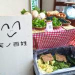 【小さなお子様も安心】旬の無農薬野菜を直売!「笑ノ百姓(えみのひゃくしょう)」 (7)