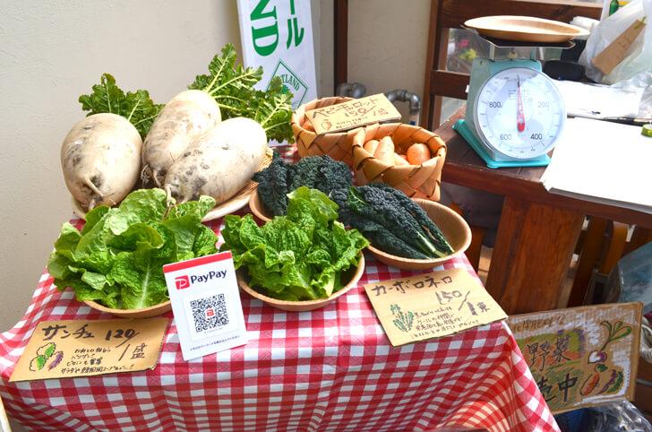【小さなお子様も安心】旬の無農薬野菜を直売!「笑ノ百姓(えみのひゃくしょう)」 (10)