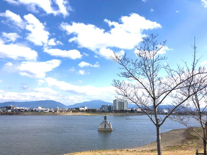 2020-03-19狭山池の桜 (13)