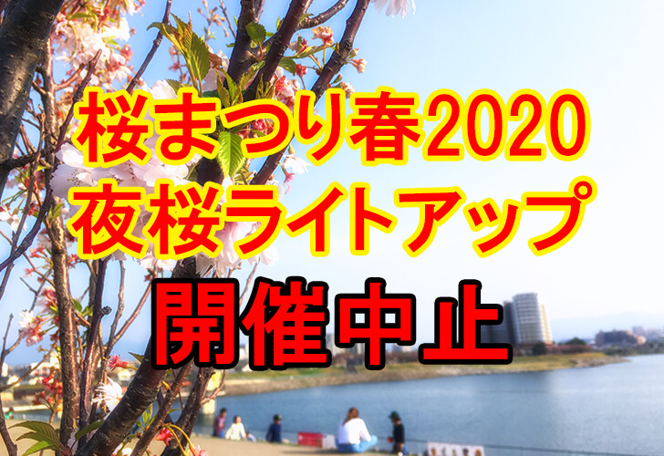 狭山池北堤の夜桜ライトアップ「桜まつり・春 2020」が開催中止