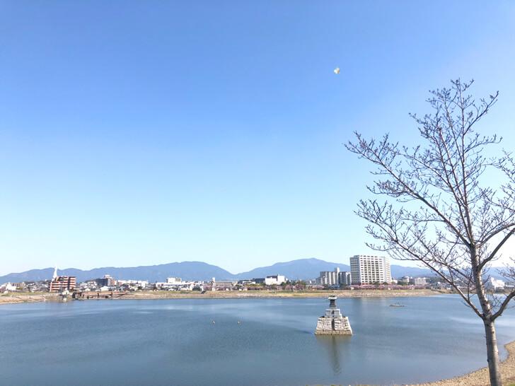 2020-03-25狭山池の桜 (17)