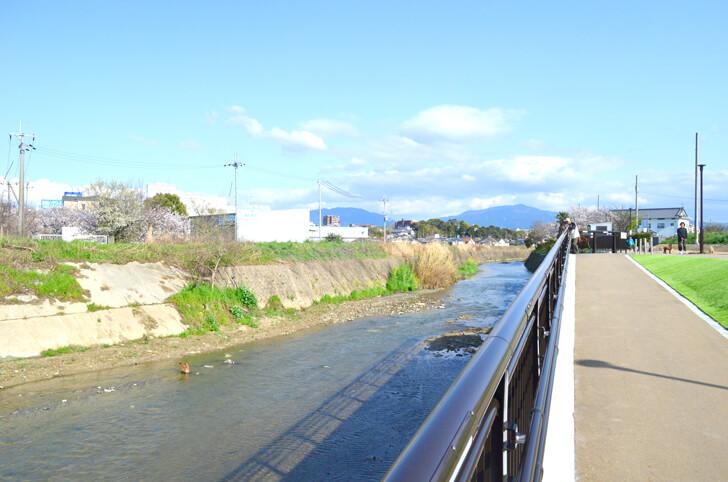 「狭山池橋下アンダーパス」が2020年4月1日より開通! (15)