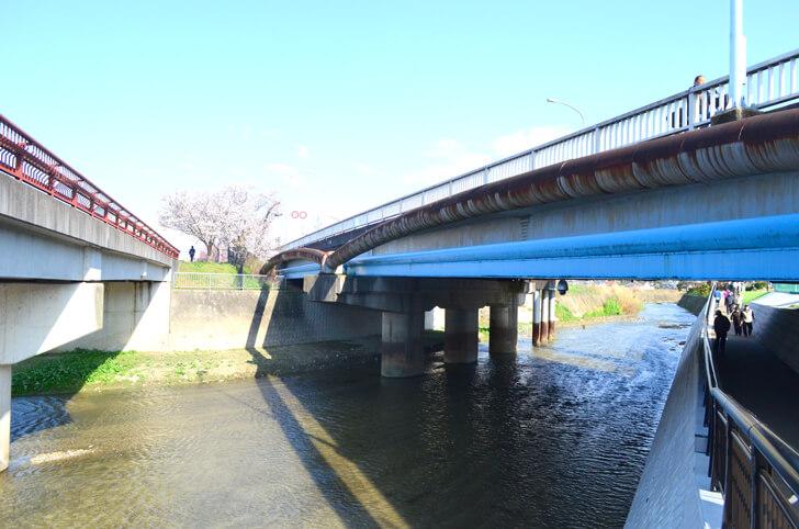 「狭山池橋下アンダーパス」が2020年4月1日より開通! (12)
