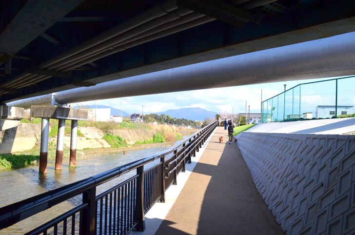 「狭山池橋下アンダーパス」が2020年4月1日より開通! (22)