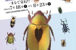 狭山池博物館の開館時間 10:00~17:00