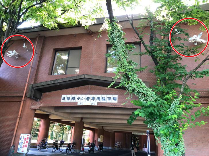 【図書館に天使を発見!】大阪狭山市活性ソング第6弾!「天使のうた」が発表されました (5)