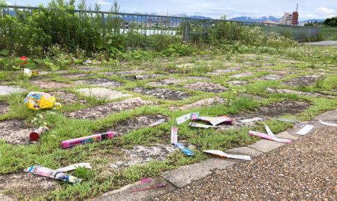 狭山池での花火もゴミのポイ捨ても禁止ですよ・・・ (1)