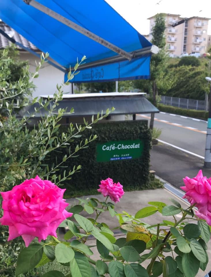 西山台のカフェ「Café-Chocolat(カフェ ショコラ)」へ寄り道してきました (4)