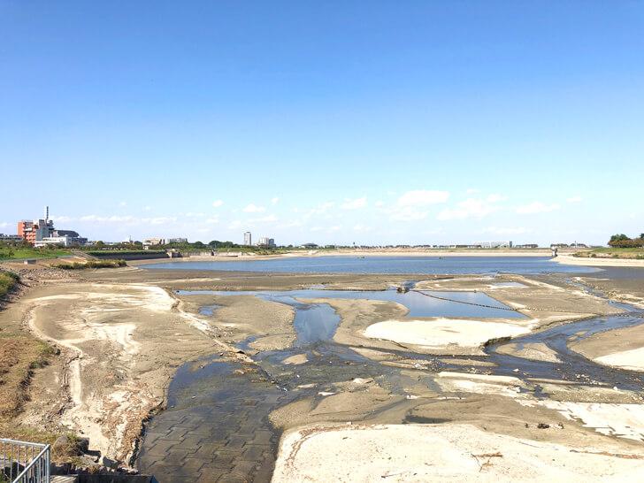 【龍神淵現る!】「狭山池の池干し」が2020年11月から実施されます-(40)