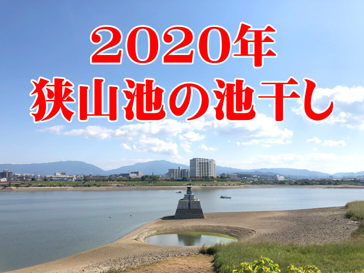 【龍神淵現る!】「狭山池の池干し」が2020年11月から実施されます-(23-1) (1)