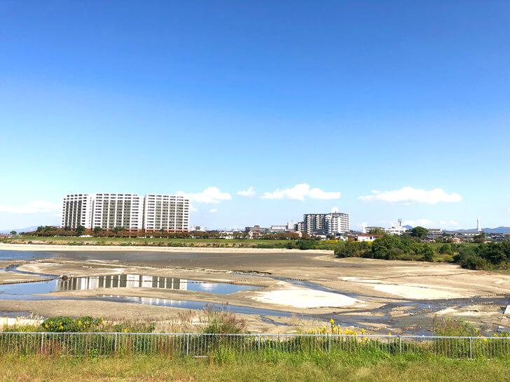 【龍神淵現る!】「狭山池の池干し」が2020年11月から実施されます-(35)