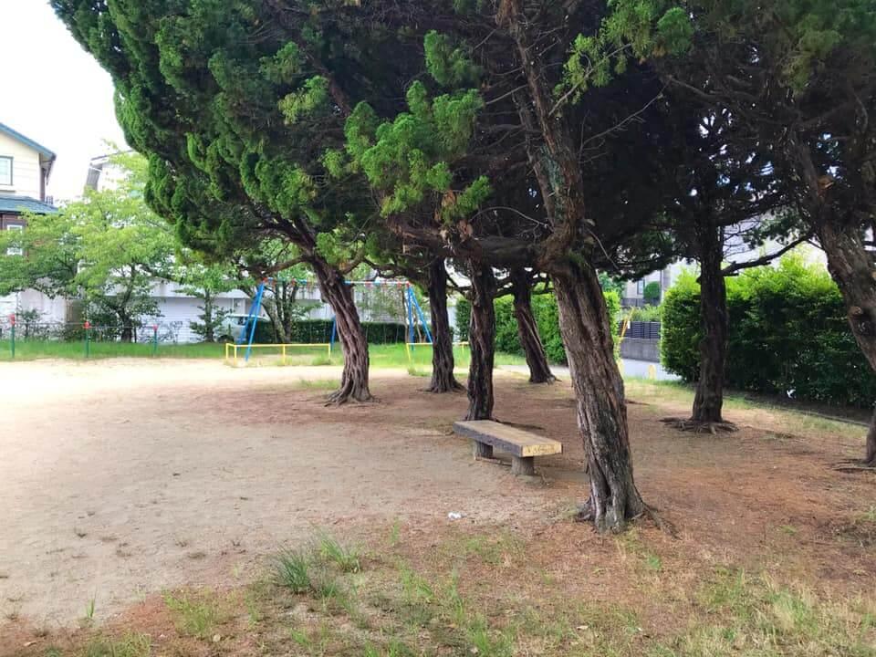 大野台の「大野台第5公園」まで散歩してきました (3)