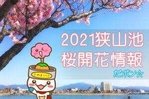 2021狭山池桜開花情報