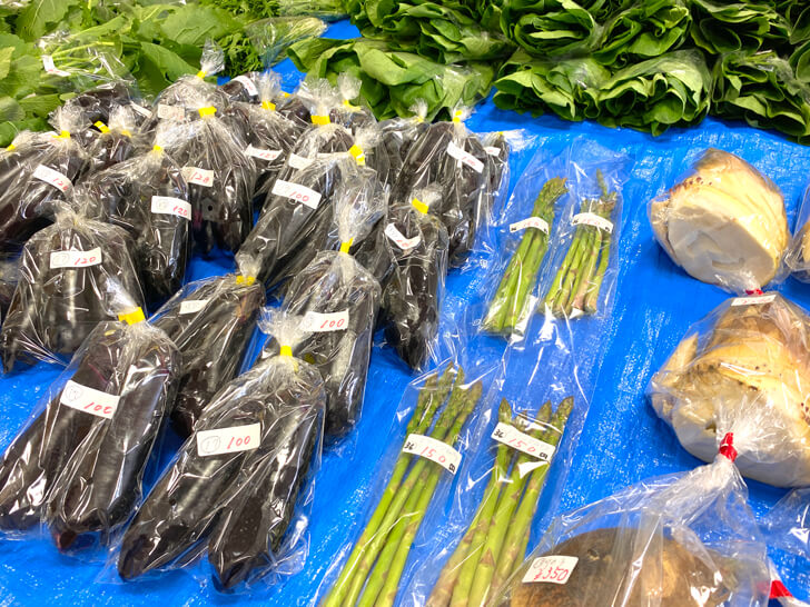 【大阪狭山の新鮮なお野菜】東池尻会館で行われている「朝市」に行ってきました-(9)