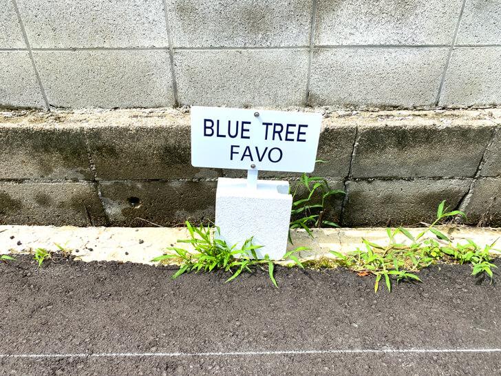 【半田6丁目】パンと珈琲の店「BLUE TREE FAVO(ブルーツリーファボ)」に行ってきました (1)