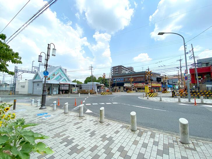 大阪狭山市駅前で「白いハト」を発見しました (2)