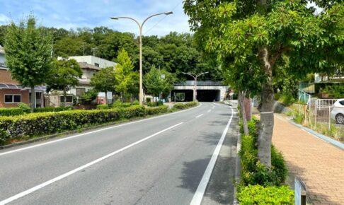 「陶器山通り」と「陶器山トンネル」を散歩してきました (7)