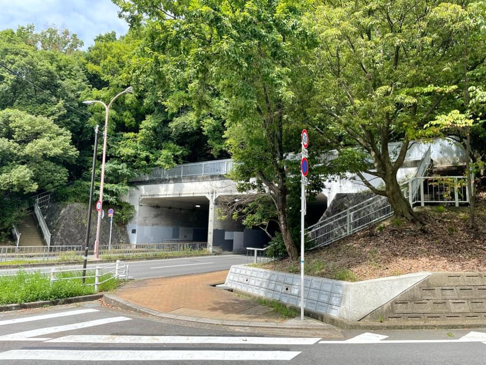 「陶器山通り」と「陶器山トンネル」を散歩してきました (9)