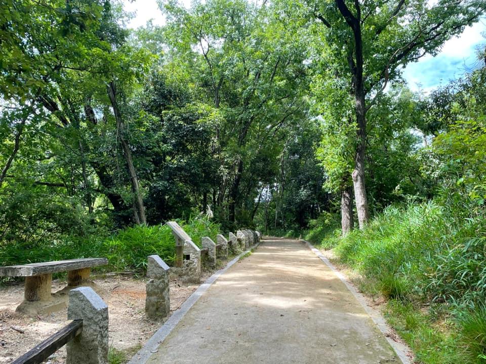 「陶器山通り」と「陶器山トンネル」を散歩してきました (5)